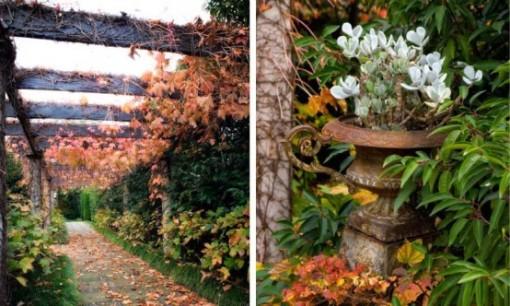 diseno-de-jardineria8