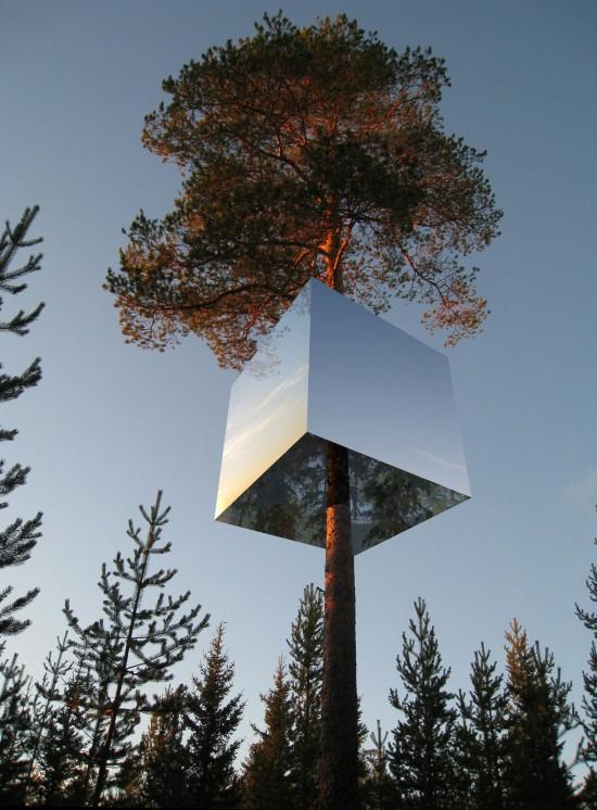 Planos de habitación en árbol (11)