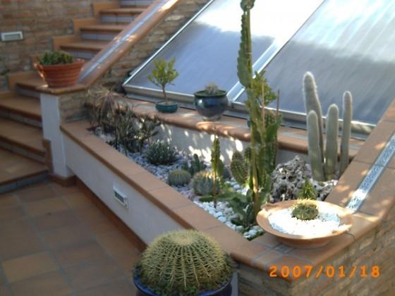 25 diseños de jardines (19)