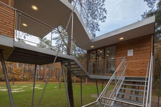 Casa de árbol en Bélgica para adultos (6)