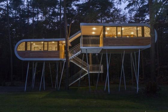 Casa de árbol en Bélgica para adultos (4)