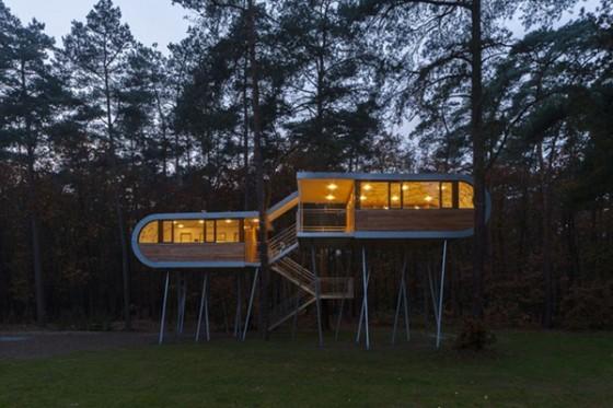 Casa de árbol en Bélgica para adultos (2)