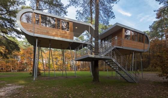 Casa de árbol en Bélgica para adultos (19)