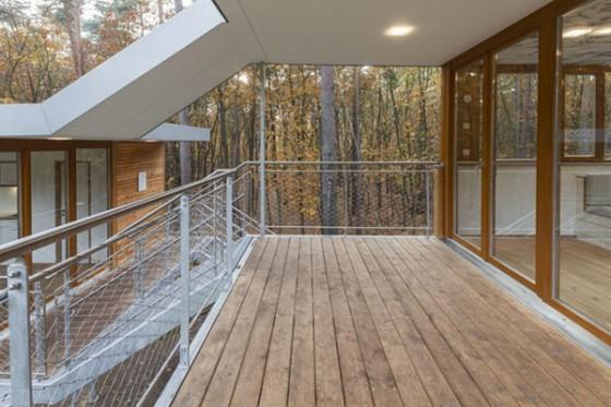Casa de árbol en Bélgica para adultos (17)