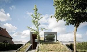 Un techo inusual que aumenta literalmente la vida del césped  que se encuentra alrededor