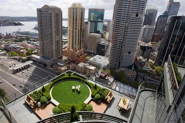 Hermoso jardín en terraza de edificio