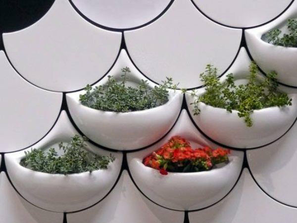 Plantas para interiores - Decoración naturista - Decoración de interiores - Decoración de interiores con plantas - Decoración verde (13)