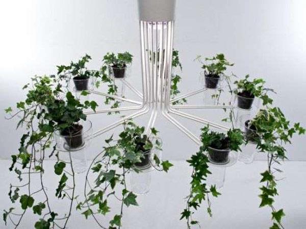 Plantas para interiores - Decoración naturista - Decoración de interiores - Decoración de interiores con plantas - Decoración verde (10)