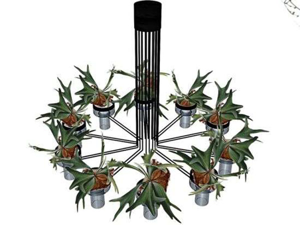 Plantas para interiores - Decoración naturista - Decoración de interiores - Decoración de interiores con plantas - Decoración verde (9)