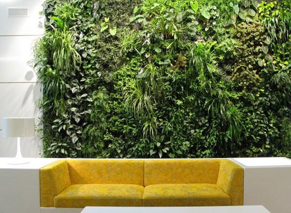 Plantas para interiores - Decoración naturista - Decoración de interiores - Decoración de interiores con plantas - Decoración verde (8)