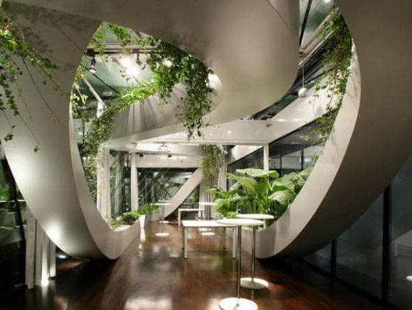 Plantas para interiores - Decoración naturista - Decoración de interiores - Decoración de interiores con plantas - Decoración verde (6)