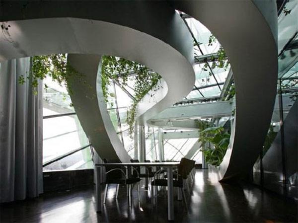 Plantas para interiores - Decoración naturista - Decoración de interiores - Decoración de interiores con plantas - Decoración verde (5)