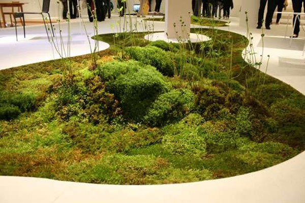 Plantas para interiores - Decoración naturista - Decoración de interiores - Decoración de interiores con plantas - Decoración verde (3)