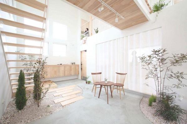 Plantas para interiores - Decoración naturista - Decoración de interiores - Decoración de interiores con plantas - Decoración verde (1)