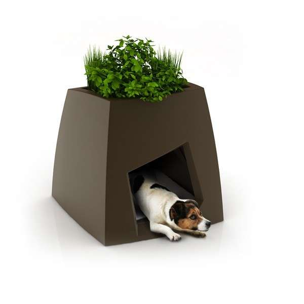 Plantas para interiores - Decoración naturista - Decoración de interiores - Decoración de interiores con plantas - Decoración verde (15)