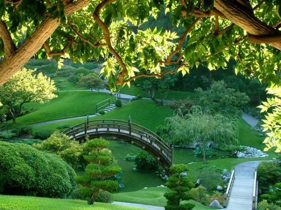 25 diseños de jardines (11)