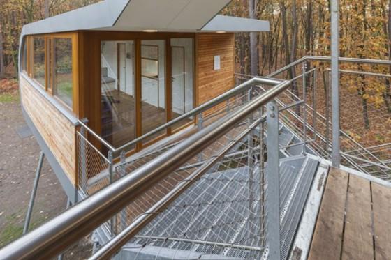 Casa de árbol en Bélgica para adultos (12)