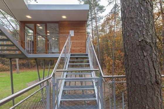 Casa de árbol en Bélgica para adultos (11)
