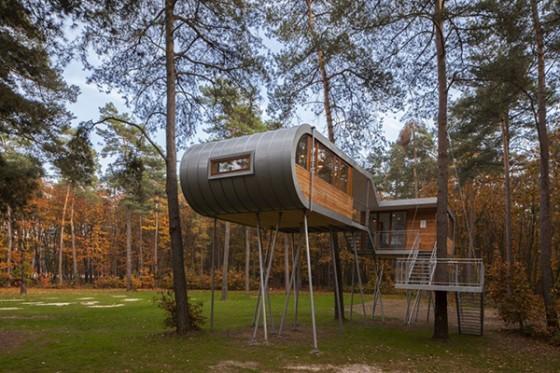 Casa de árbol en Bélgica para adultos (10)