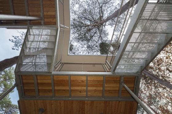 Casa de árbol en Bélgica para adultos (9)