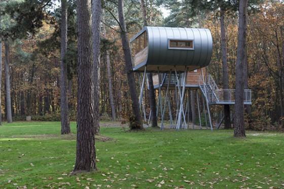 Casa de árbol en Bélgica para adultos (8)