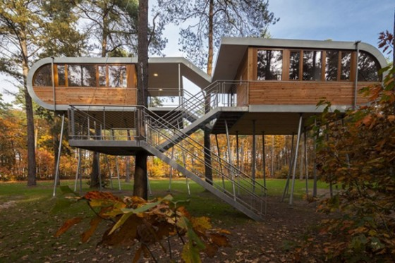 Casa de árbol en Bélgica para adultos (3)