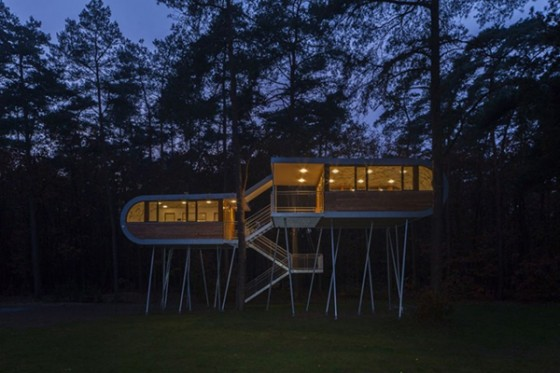 Casa de árbol en Bélgica para adultos (1)