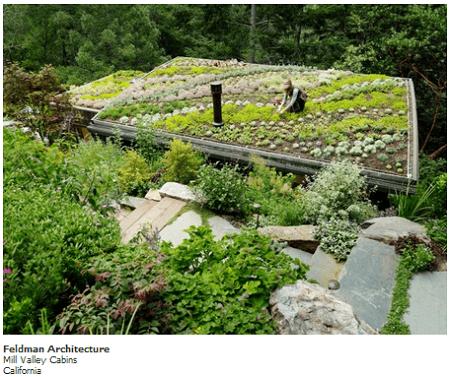 Techos organicos para casas prefabricadas