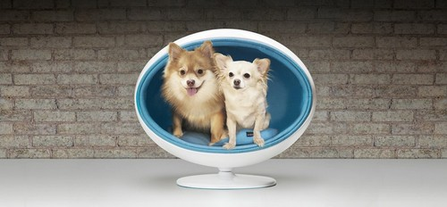 Casitas de lujo para perros y gatos
